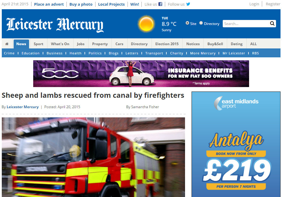 Sheep and lambs rescued from canal by firefighters