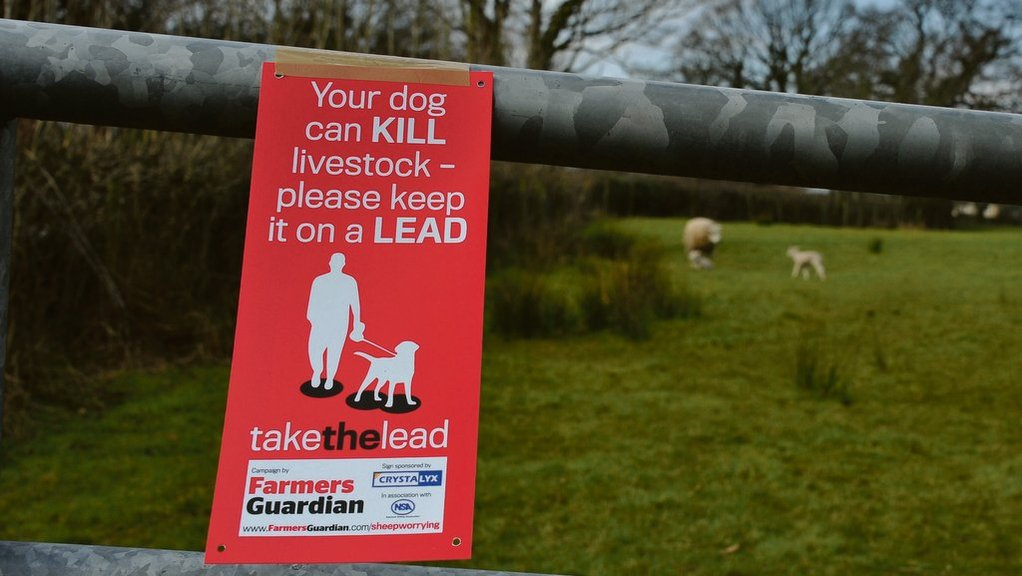 Farmers Guardian Take the Lead campaign