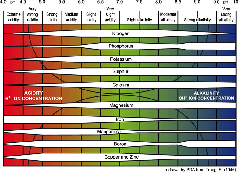 Availability of elements by soil pH