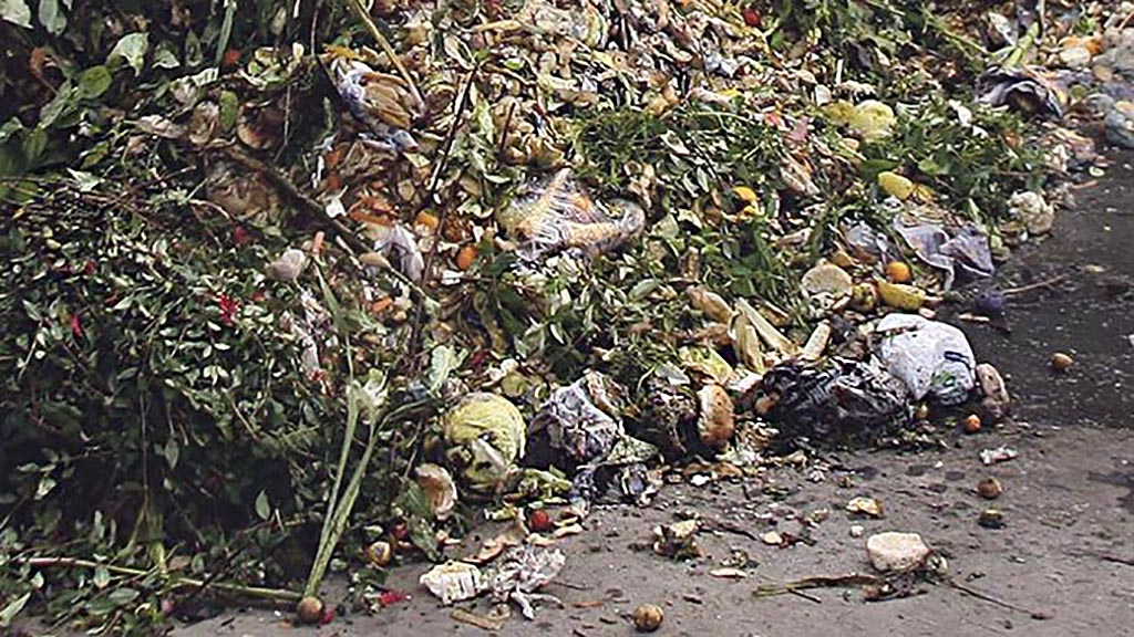 Food waste - cost or opportunity?