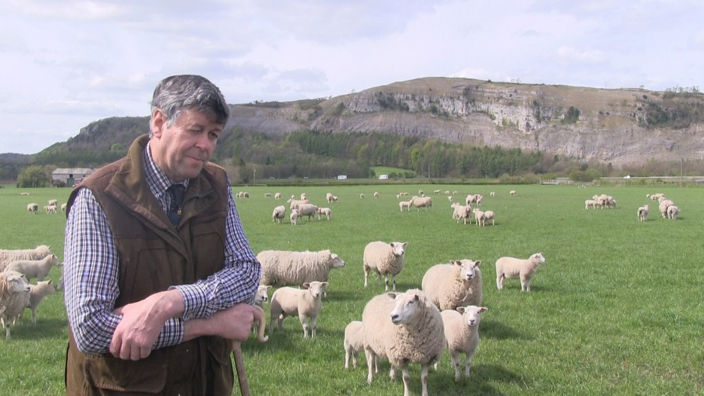Case study: John Geldard, sheep farmer, Kendal