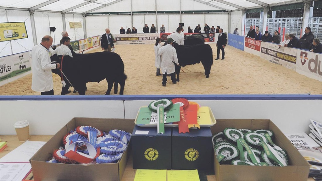 Beef Expo 2015: Record Spring Spectacular entries and a twist for the auctioneers challenge
