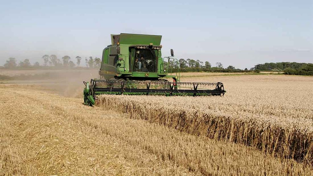 2015 harvest set to bring record wheat yields