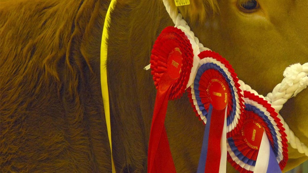 Smallholders shine in the show ring