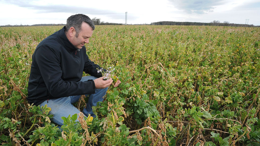 Focus on conservation makes Yorkshire arable farmer a cereal winner