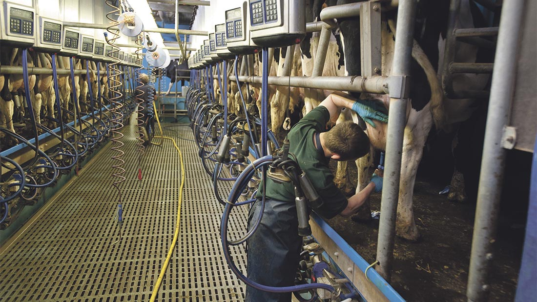 NFU describes Arla price cut as another 'body blow' to the dairy sector