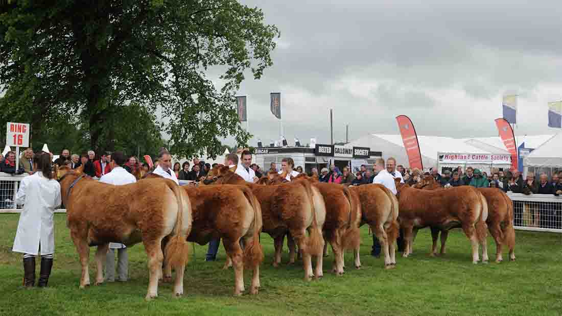 Royal Highland receives record attendance figures