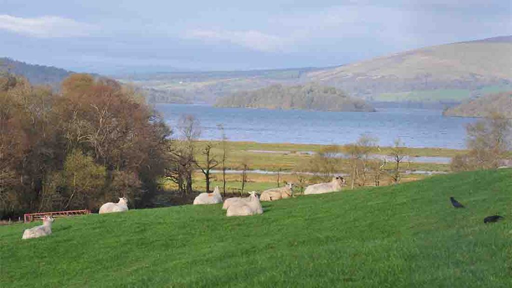 Land Reform Bill is mixed result for Scottish agriculture