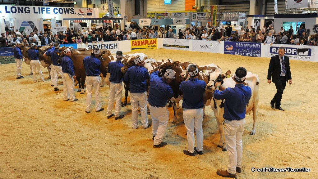Livestock Event 2015: Live from the ring side