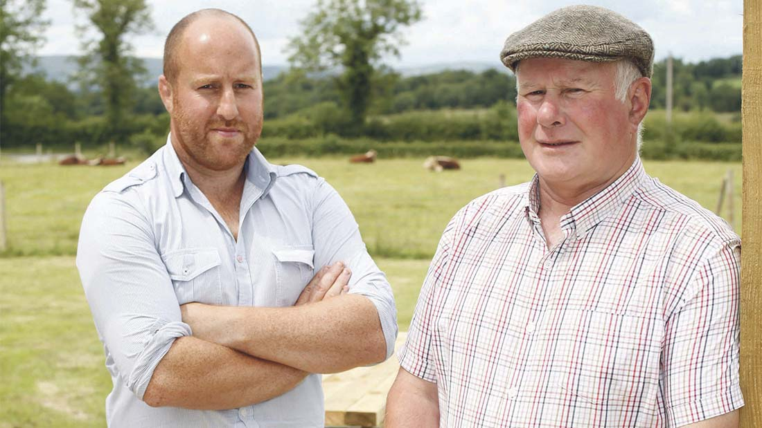 Pedigree Hereford herd a success for Derrylin farm