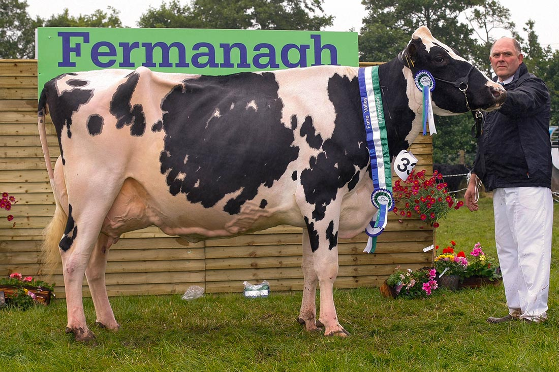 All Ireland dairy championship