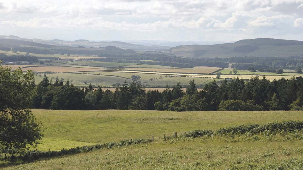 The 141-hectare (350-acre) Chillingham Park, in Northumberland, is home to a herd of 100 Chillingham cattle