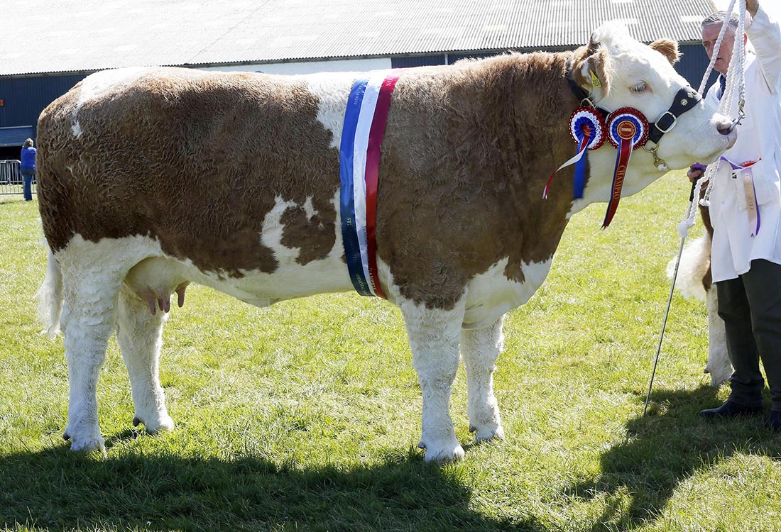 Reserve inter-breed
