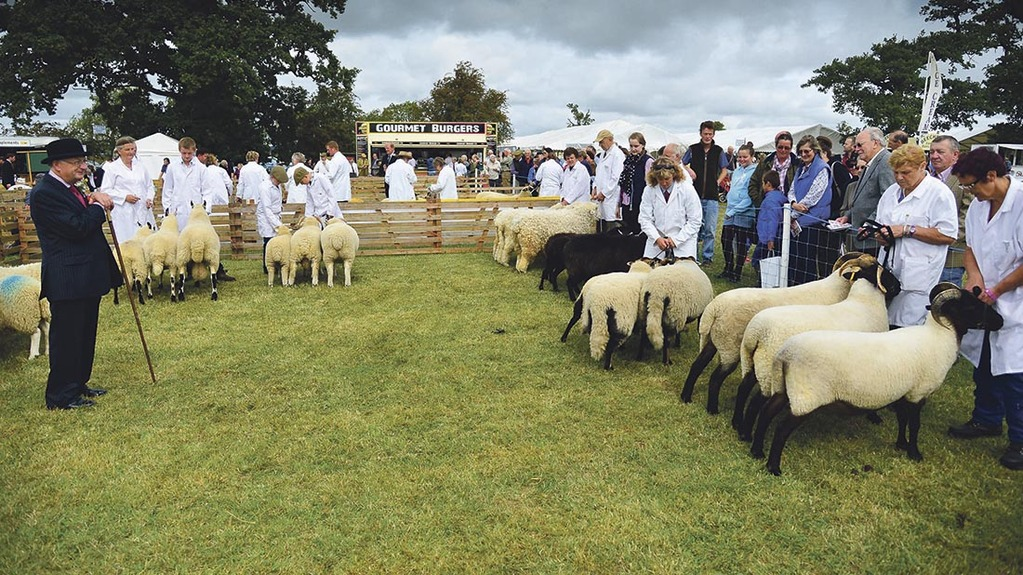 Thousands of visitors injured Buckinghamshire's annual show