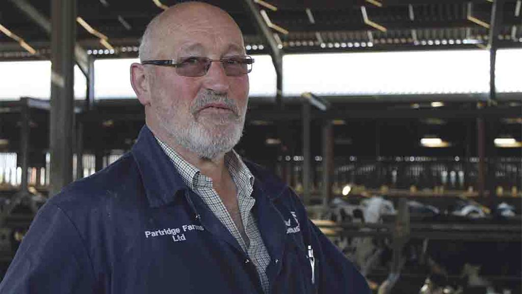 Feed automation improves efficiency of Holstein herd