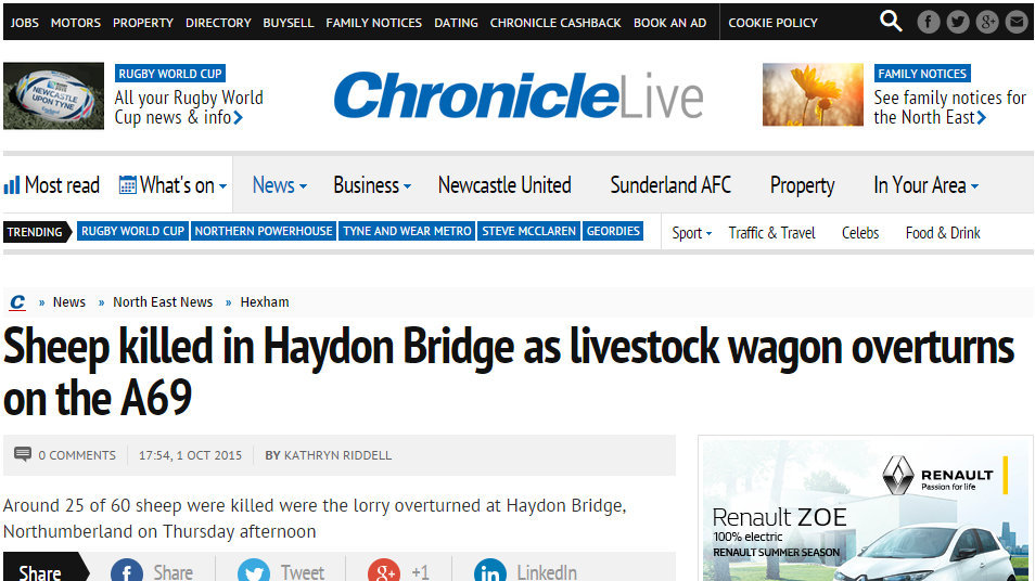 Sheep killed in Haydon Bridge as livestock wagon overturns on the A69