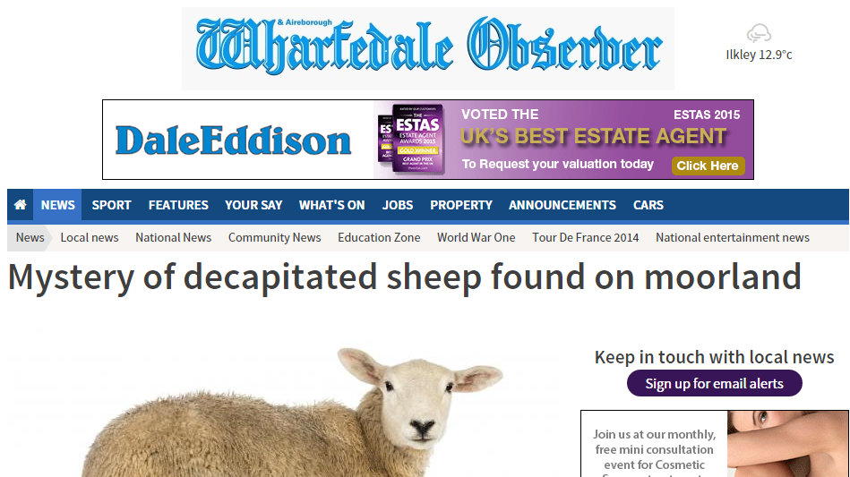 Mystery of decapitated sheep found on moorland