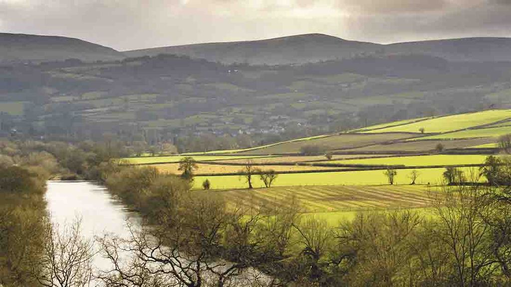 Welsh farmers 'pushed to the brink' over BPS delays claims AM