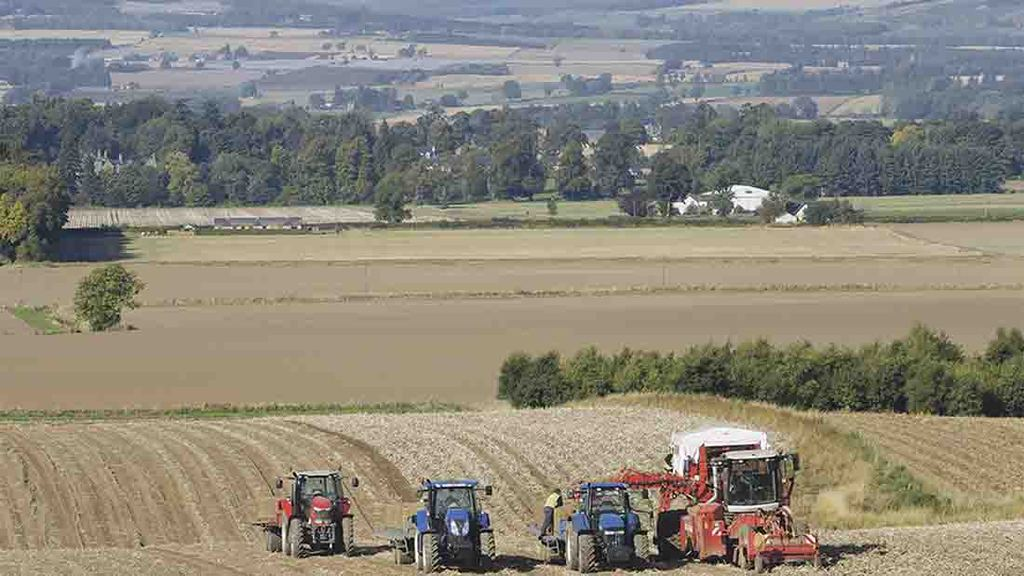 'Alarm bells ringing' as Scottish farm incomes fall again