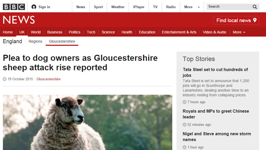 Plea to dog owners as Gloucestershire sheep attack rise reported