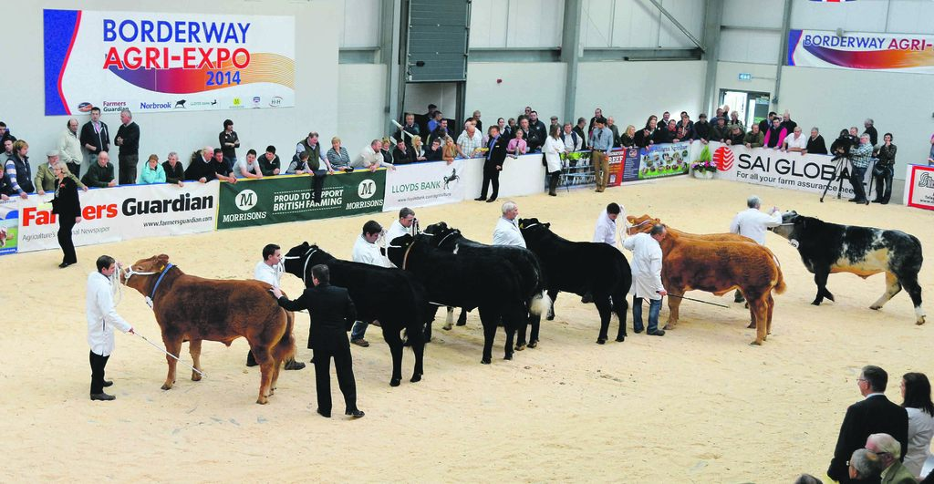 Agri-Expo Preview: Judges ready to take centre stage