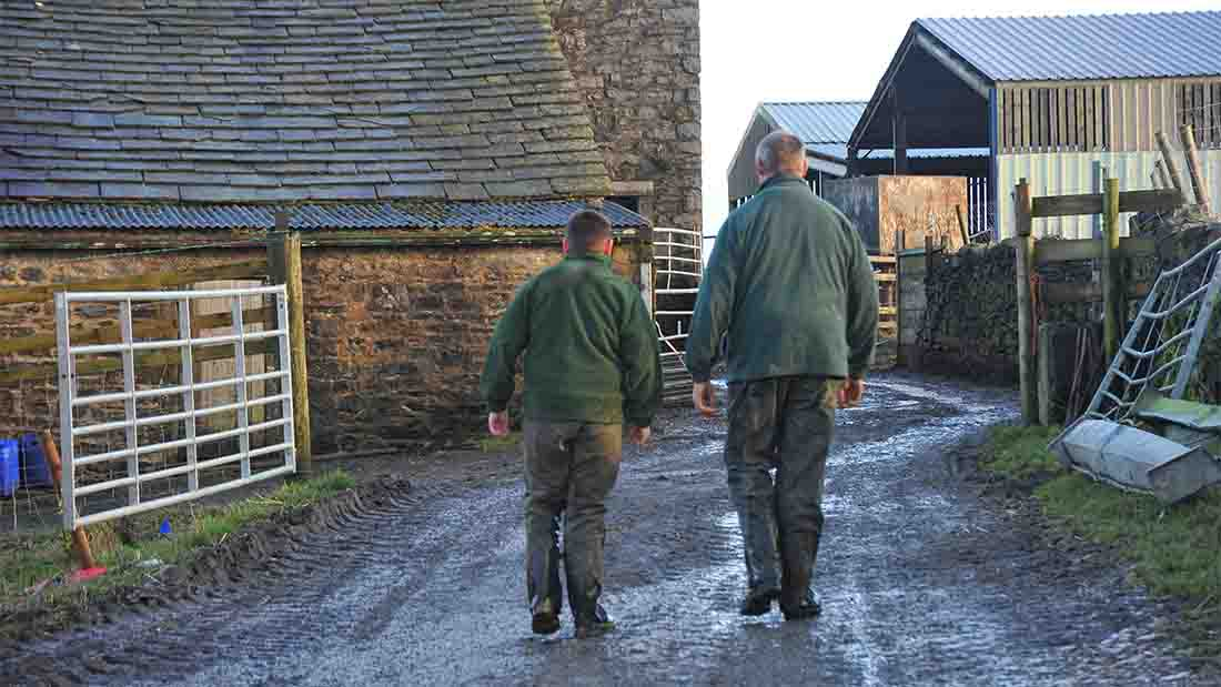Brexit pushing farmers to diversify, says new survey
