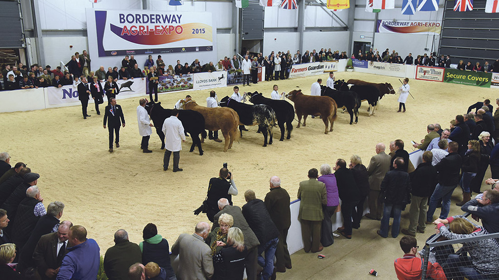 Meet the Agri-Expo livestock judges