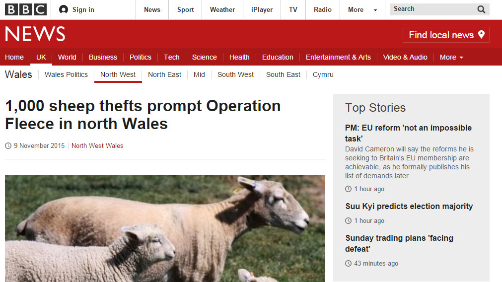 1,000 sheep thefts prompt Operation Fleece in north Wales