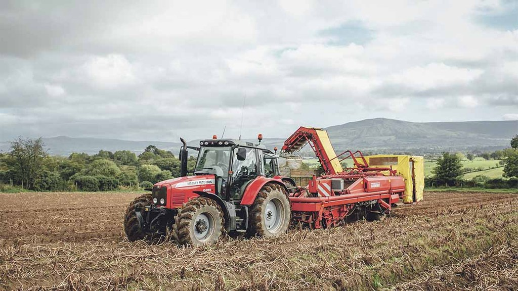 The machinery fleet includes a harvester, seven tractors, a forklift, six trailers, two destoners, two bed tillers, a planter and two small forklifts
