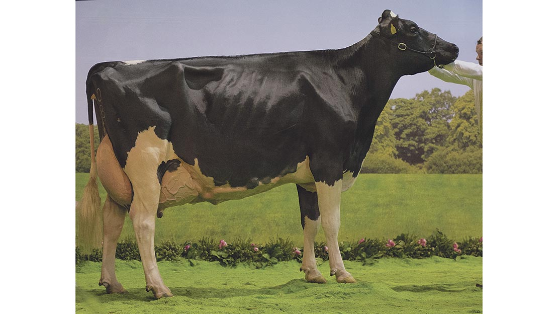 agriscot