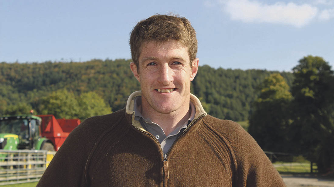 James Evans established the herd of Stabilisers in 2007 on his family farm in Shropshire.