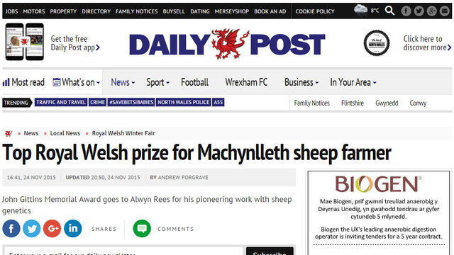 Top Royal Welsh prize for Machynlleth sheep farmer
