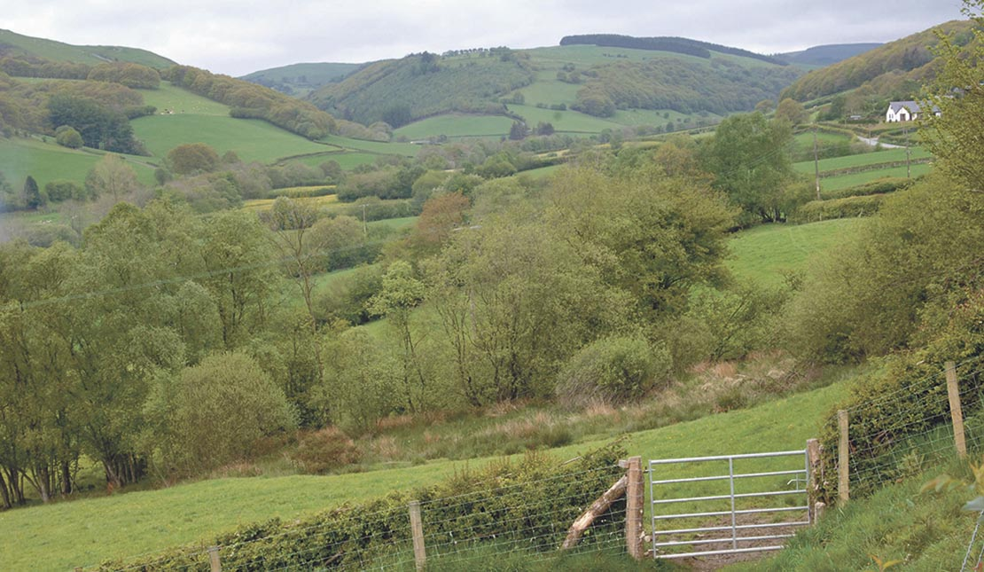New rural manifesto will challenge 'elitism' in countryside policy