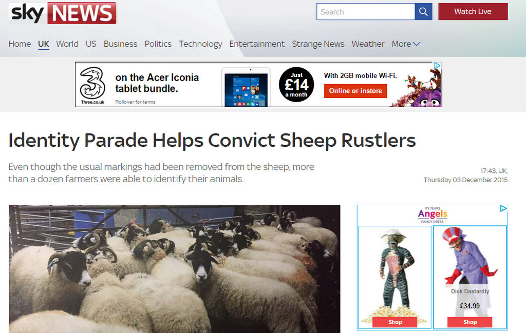 Identity Parade Helps Convict Sheep Rustlers