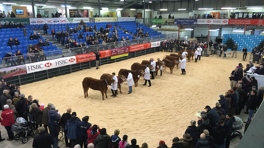 Royal Welsh Winter Fair: what you need to know