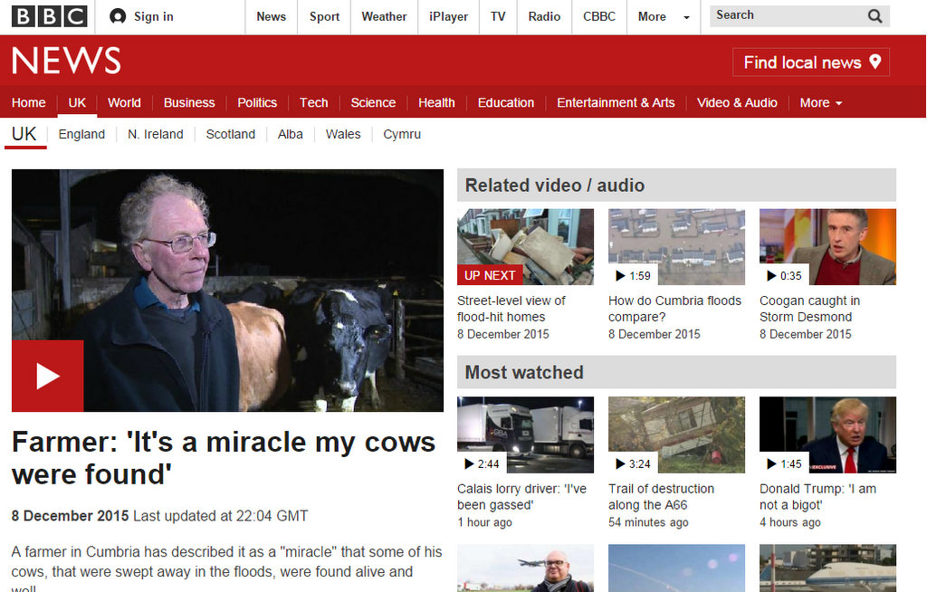 Farmer: 'It's a miracle my cows were found'