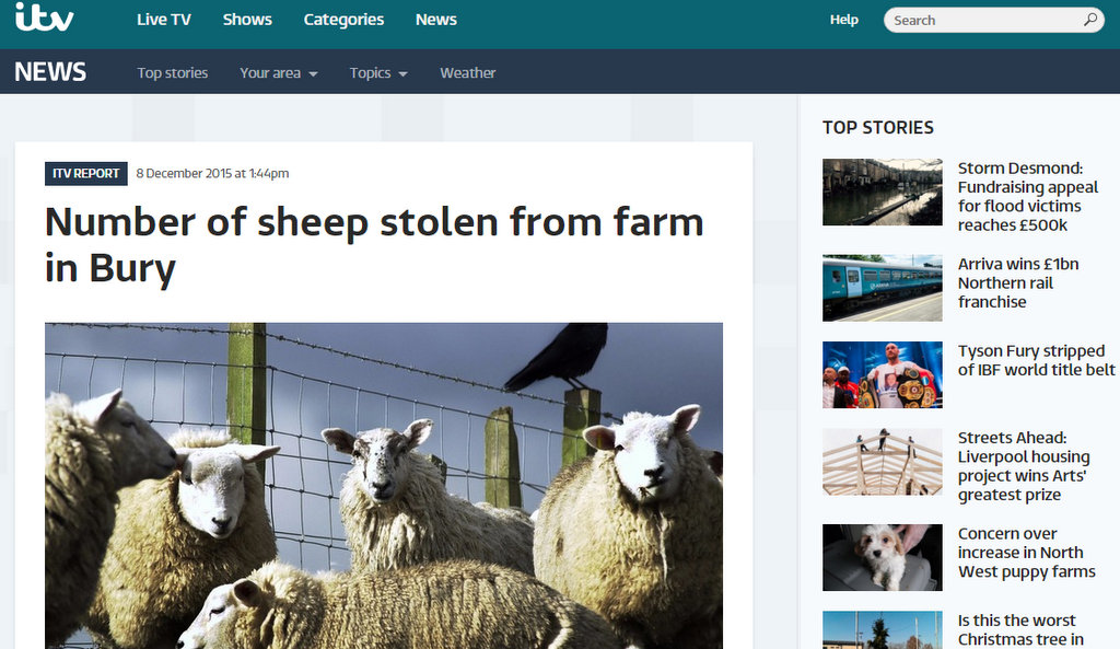 Number of sheep stolen from farm in Bury