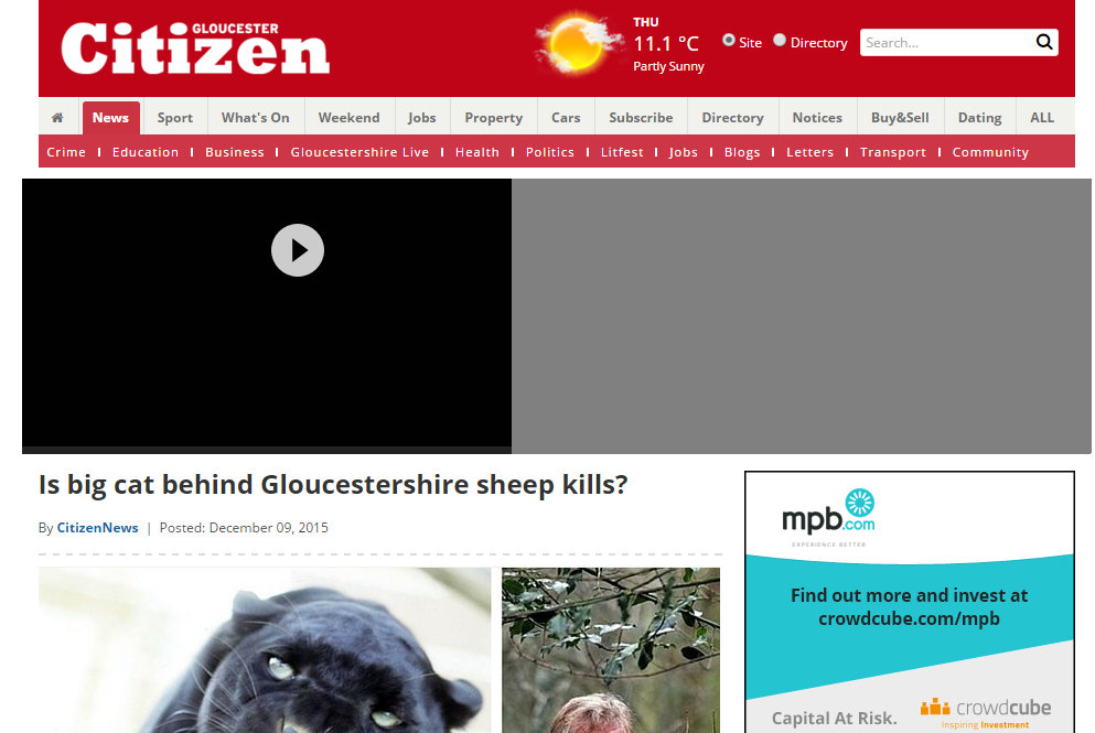Is big cat behind Gloucestershire sheep kills?