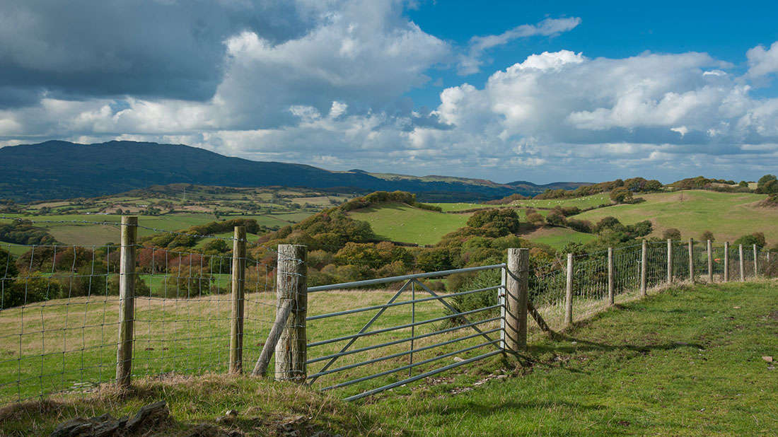 Plaid Cymru vow to be a 'strong voice' for rural communities if elected in May