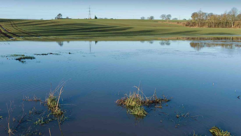 Flooding has devastated farmland in Perthshire