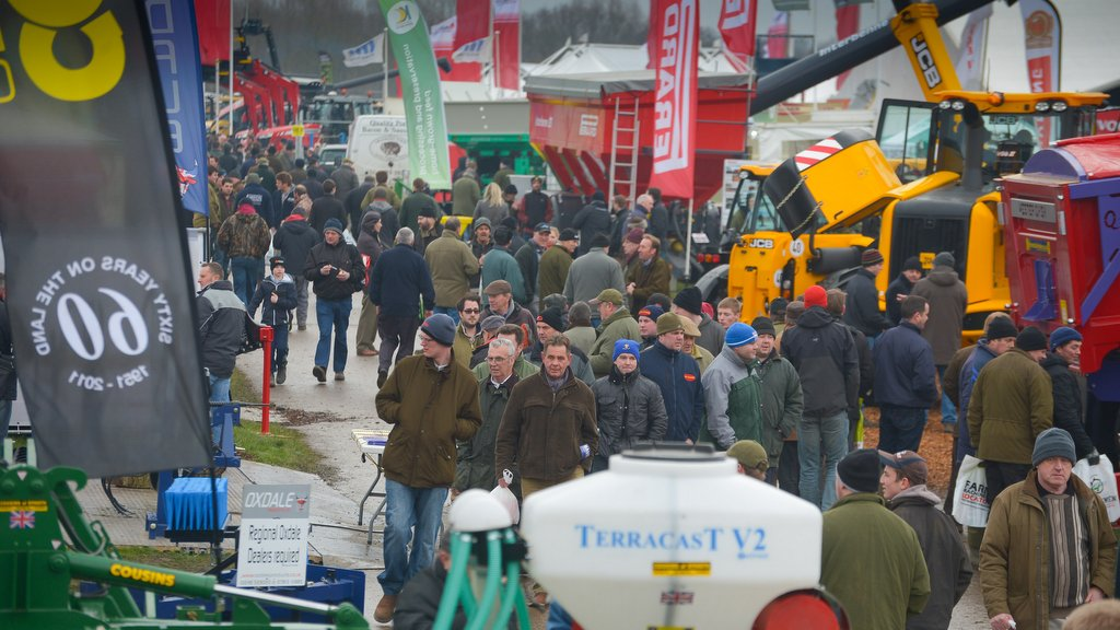 The crowds at Lamma 2015