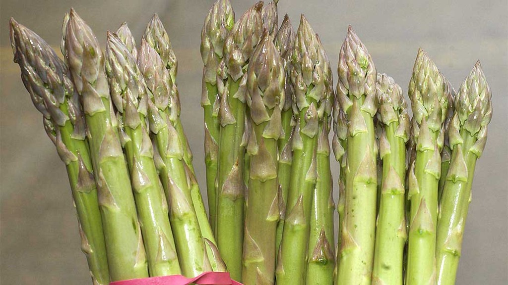 Asparagus sprouts early thanks to unseasonably warm weather