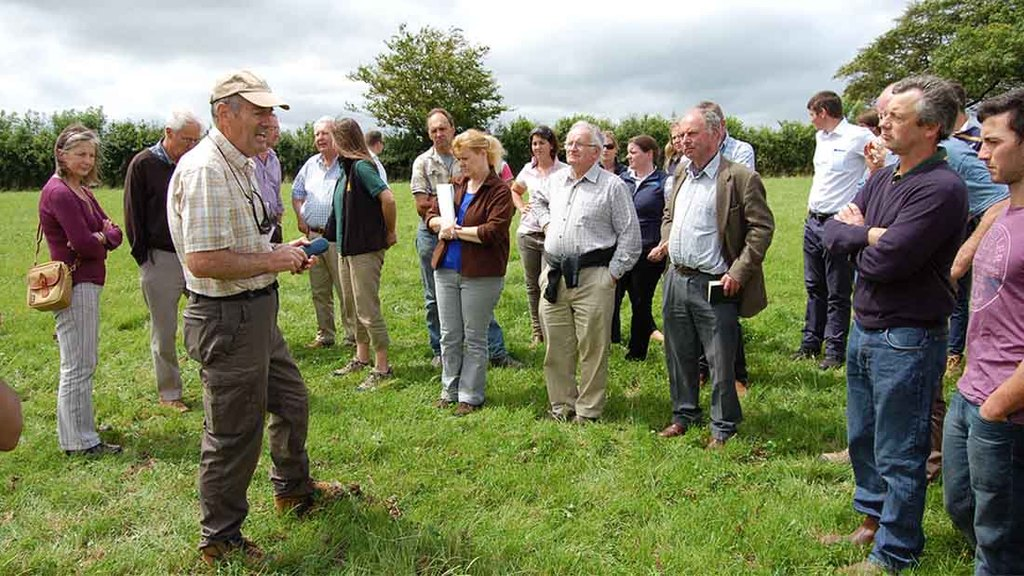 Research at North Wyke to improve grassland management