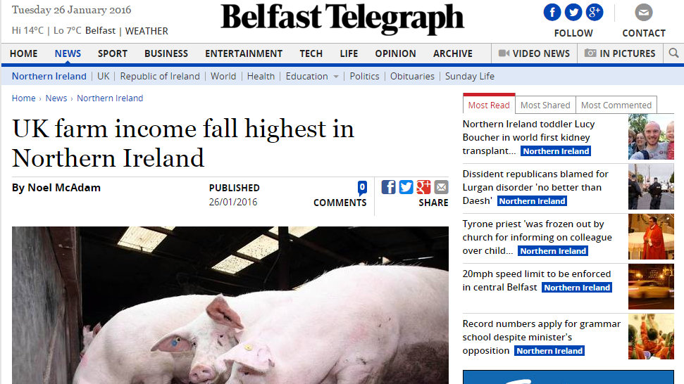 UK farm income fall highest in Northern Ireland