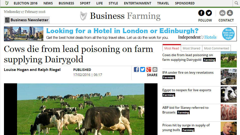 Cows die from lead poisoning on farm supplying Dairygold