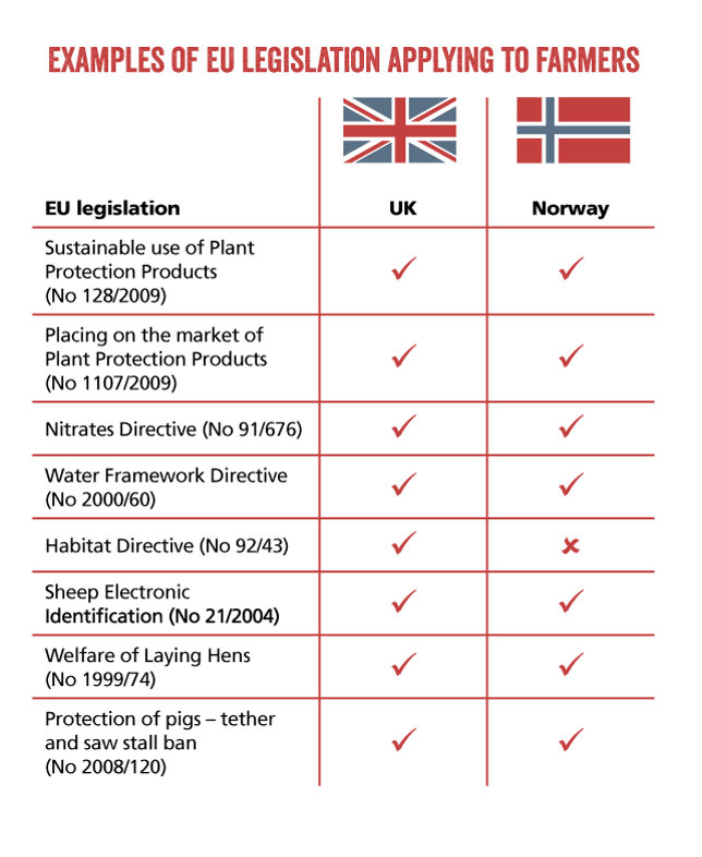 european union advantages and disadvantages essay What are the advantages and disadvantages of norway not joining the european union why didn't norway join the european union was the adoption of the euro by the european union a good policy decision.
