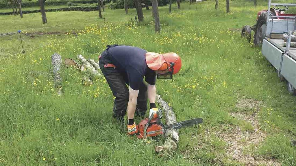 Chainsaw incidents remain a concern