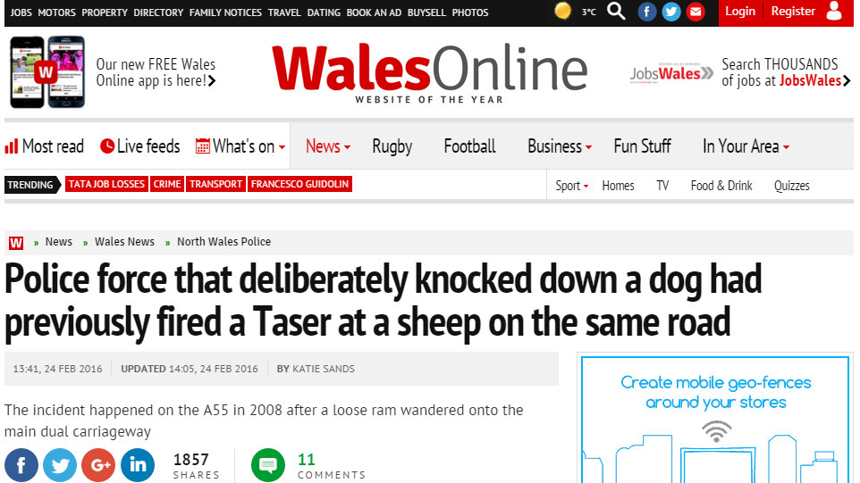 Police force that deliberately knocked down a dog had previously fired a Taser at a sheep on the same road