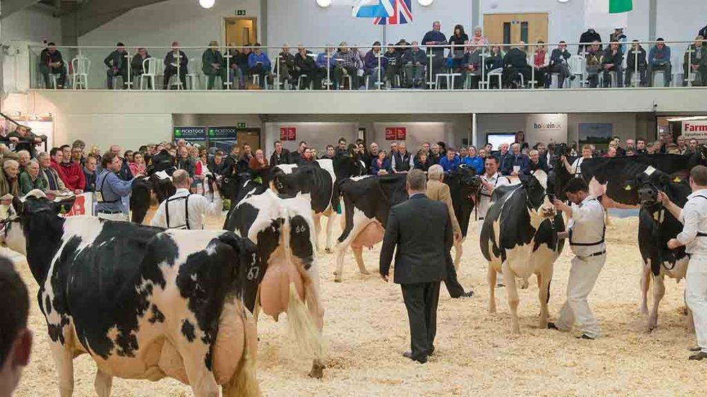 Stage set for another successful UK Dairy Expo in 2016