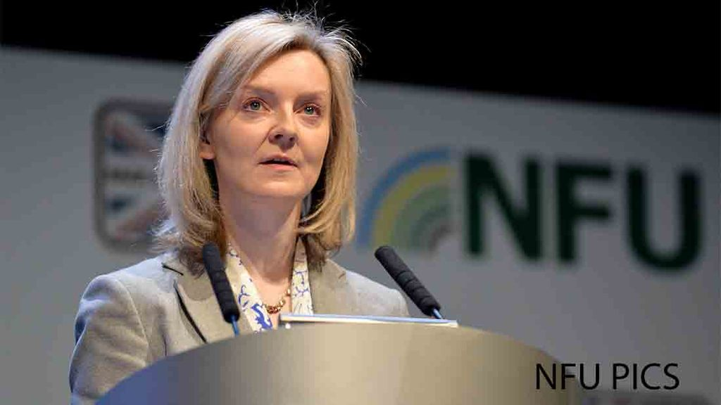 Farmers could face 'crippling' EU tariffs in the event of Brexit - Truss